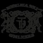 wieliczka-logo